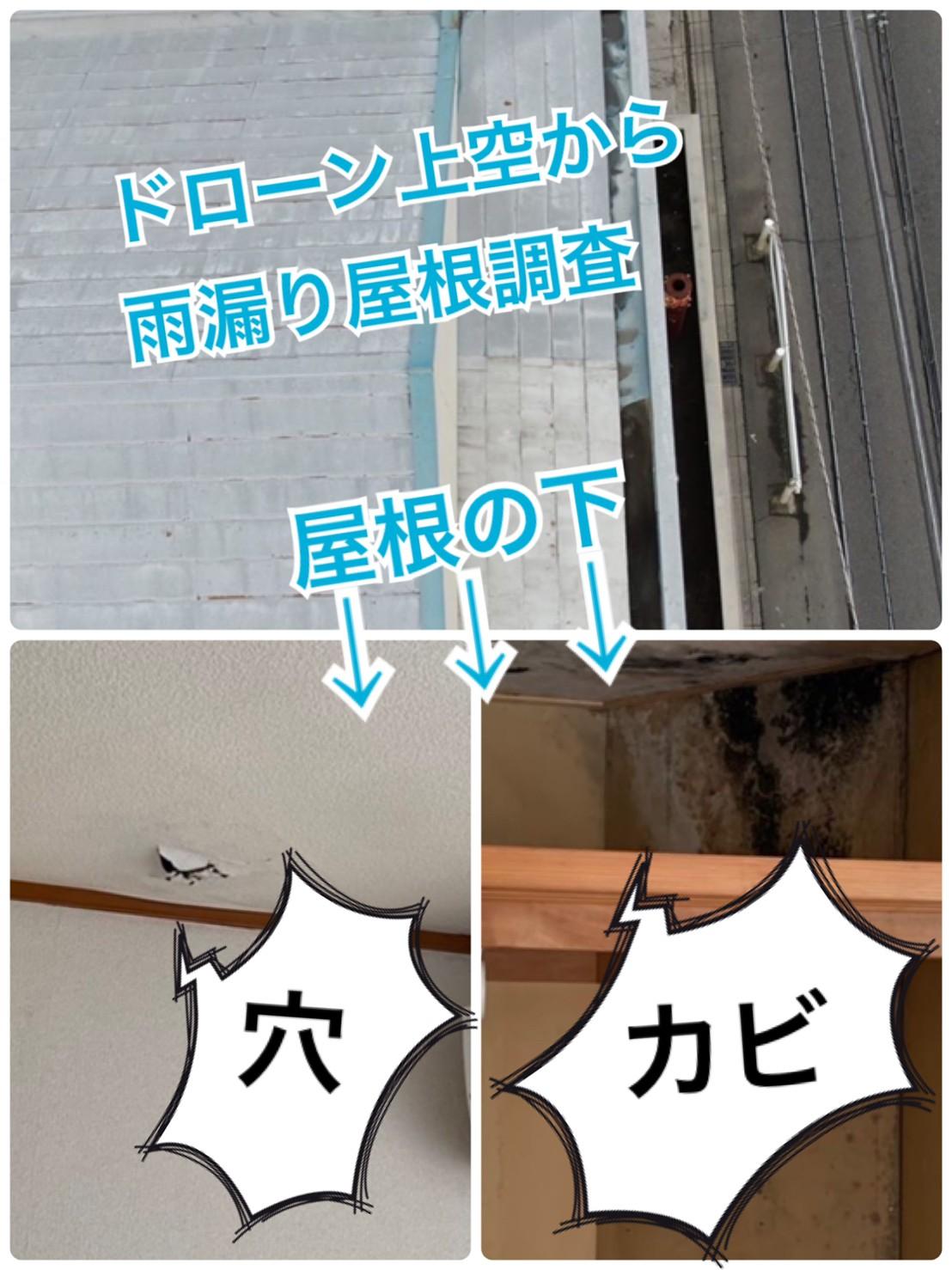 雨漏り屋根☔ドローン調査🔎